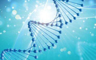 Epigenética y nutrición… ¿cómo se relacionan?